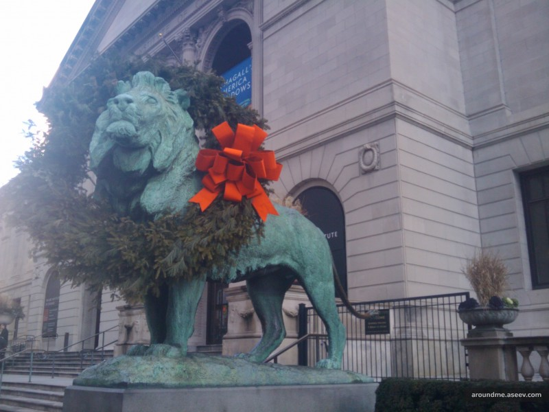 Lions in Chicago are ready for Christmas