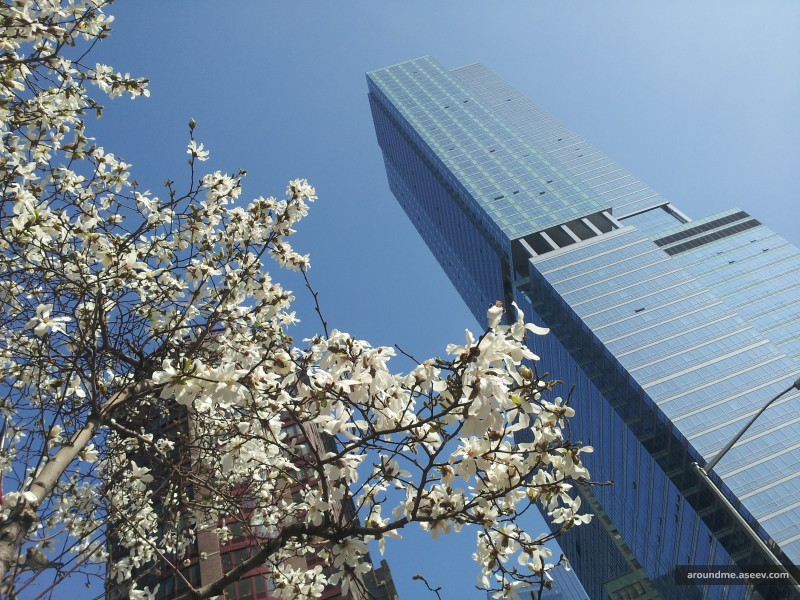 Spring is in New York