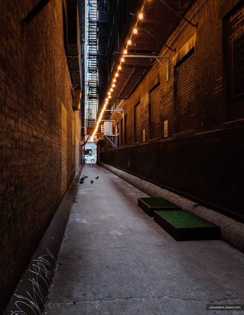 Back Alleys of Chicago